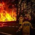 01 australia bushfire 1219