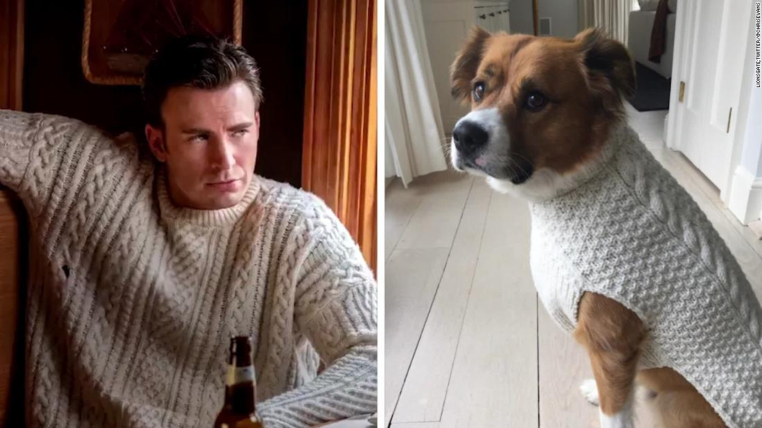 Ο κρις Έβανς παίρνει τον σκύλο του μια αντίστοιχη