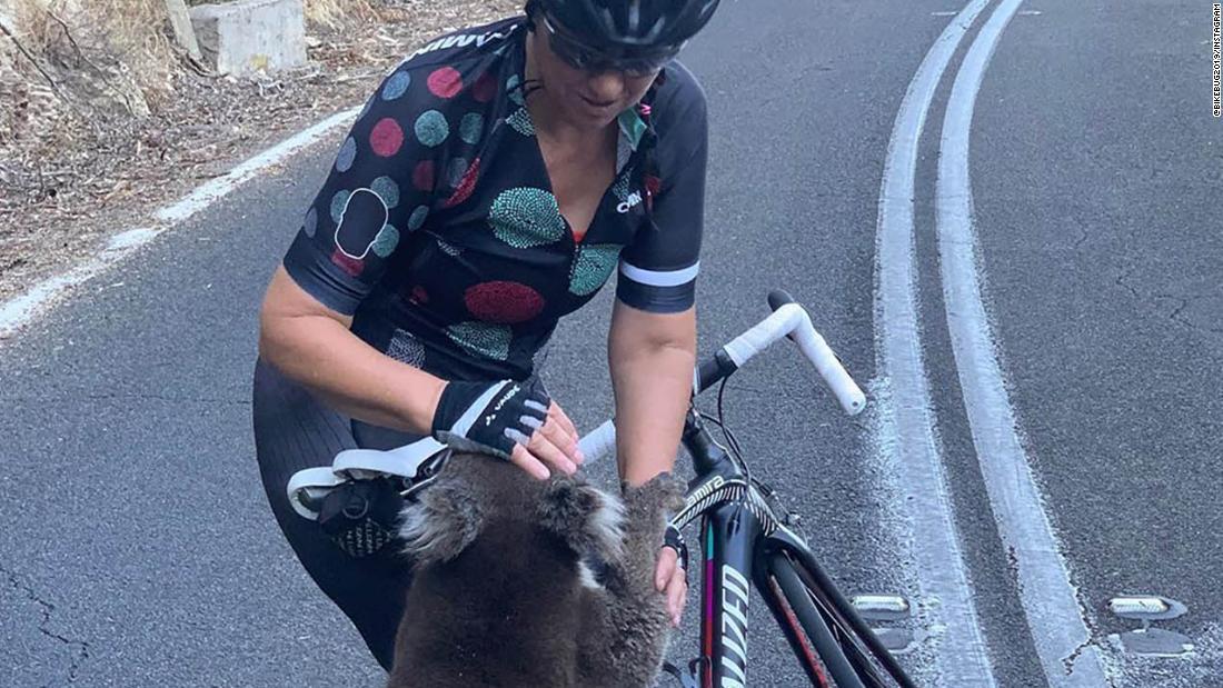 Παρακολουθήστε αυτό το διψασμένο κοάλα καταναλώνουν ένας ποδηλάτης είναι το μπουκάλι νερό