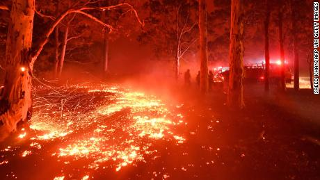 Australia saw its worst bushfire season on record in 2019-20.