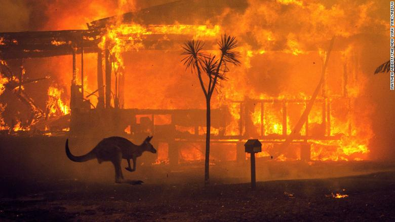 A kangaroo rushes past a burning house in Lake Conjola, Australia, on December 31.