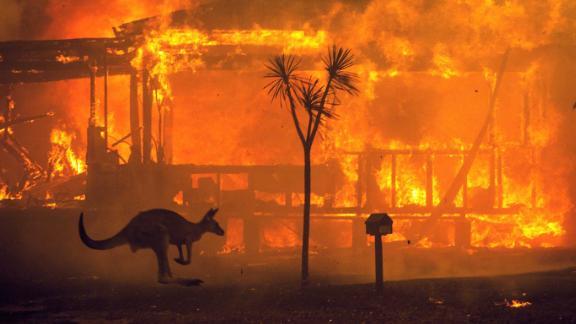 A kangaroo rushes past a burning house in Lake Conjola, Australia, on December 31.