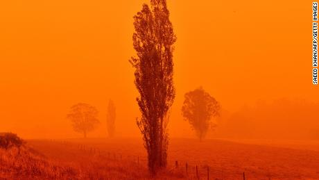 Australian Open: How bushfires might impact tennis' first major