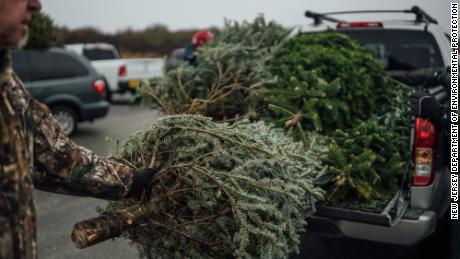 About 2,000 New Jersey residents dropped off their Christmas trees to help save the sand dunes