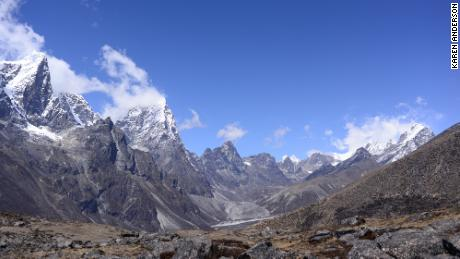 Plant life is expanding in the area around Mount Everest, and across the Himalayan region, researchers have found.