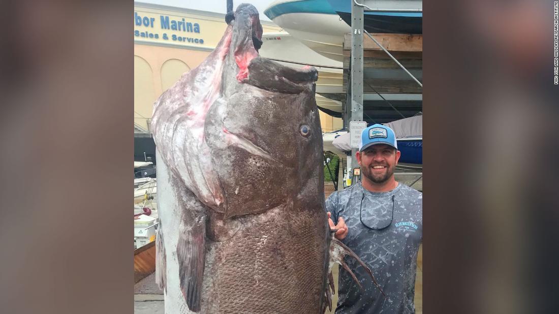 漁師キャッチングよく大きな魚
