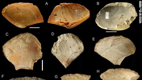 The Neanderthals combed beaches and dived for shells to be used as tools, the study says
