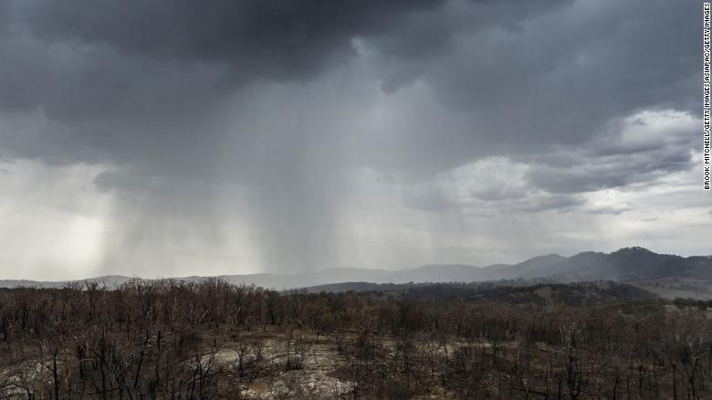 Rain falls on drought and fire-ravaged country near the city of Tamworth, New South Wales on January 15, 2020.