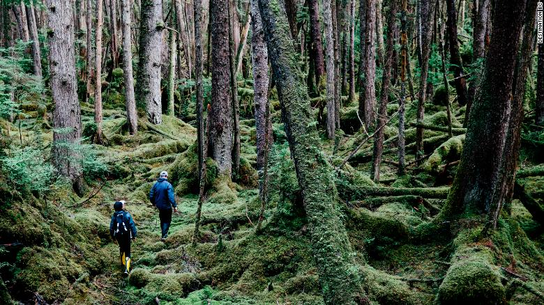 Visiting Haida Gwaii, Canada's most mysterious islands