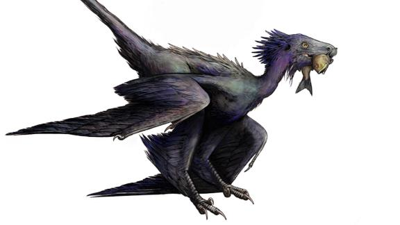 Image for 'Dancing dragon' feathered dinosaur fossil discovered in China