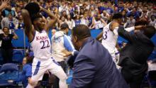 NCAA Kansas State Wildcats Backscratcher