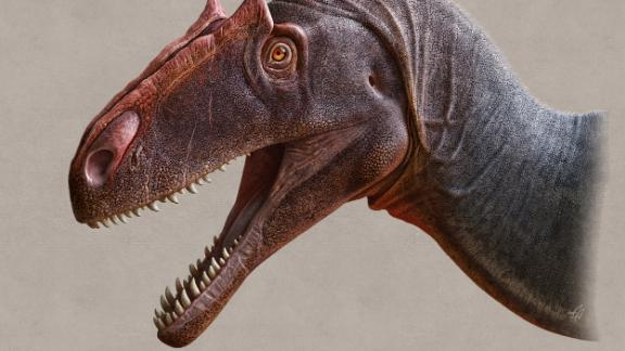 The newly discovered species Allosaurus jimmadseni represents the earliest Allosaurus known. It was a fearsome predator that lived during the Late Jurassic Period millions of years before Tyrannosaurus rex.