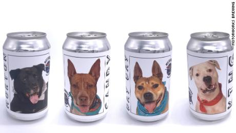 A Florida brewery released beer cans that feature dogs that are ready to be adopted