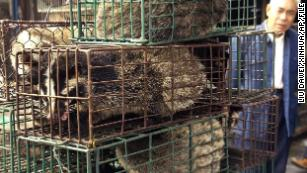 A man looks at caged civet cats in a wildlife market in Guangzhou, capital of south China's Guangdong Province in 2004.