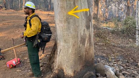 Capt. Leonard Dimaculangan was battling blazes near the Buffalo Mountain National Park in Victoria.