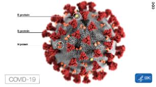 Mutation could make coronavirus more infectious, study suggests