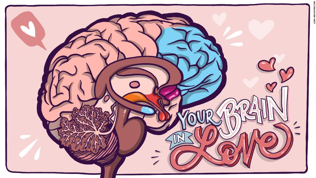 Are you in love or just high on chemicals in your brain? Answer: Yes thumbnail