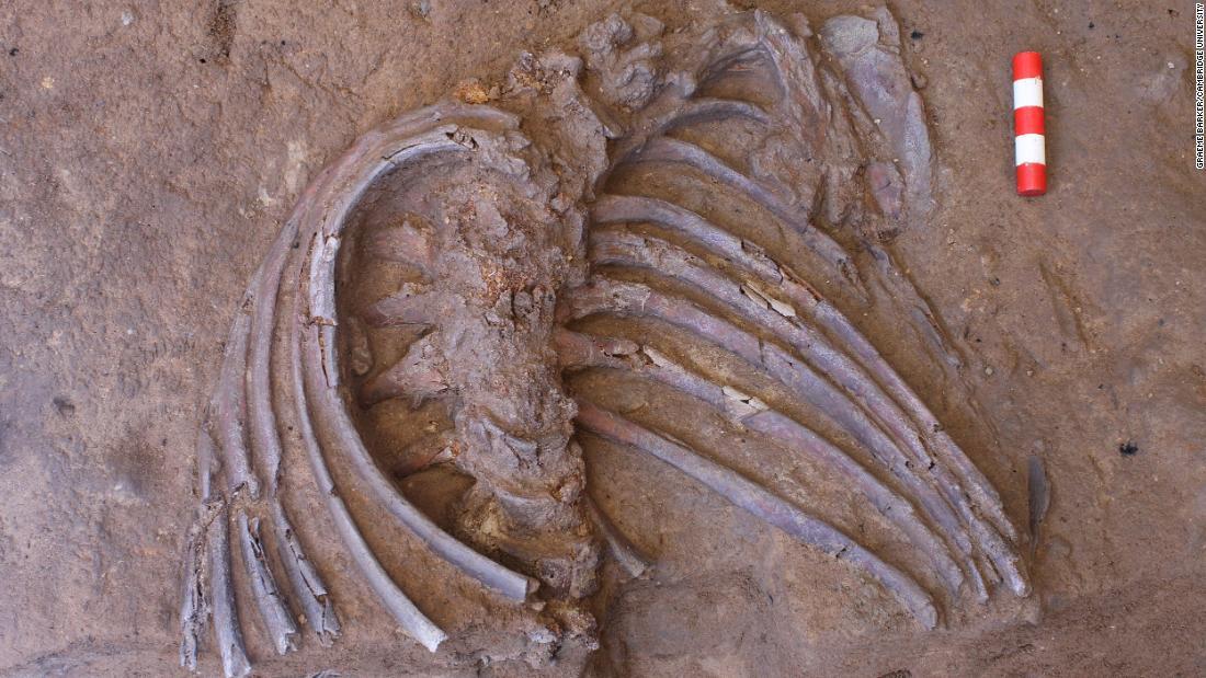 Σκελετό που βρέθηκε στο σπήλαιο θα μπορούσε να αποκαλύψει Νεάντερταλ τελετουργίες θανάτου