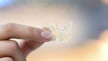 A 3D printed butterbly made from McDonald's waste cooking oil.