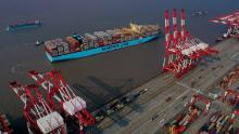 Tugboats guide a Maersk container ship in Shanghai.