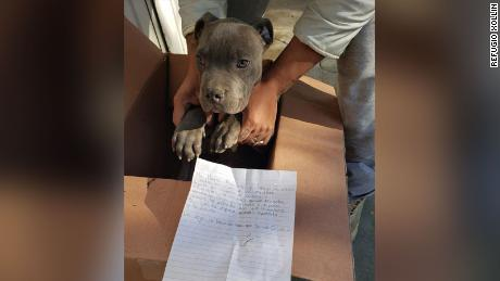 Andrés, a 12-year-old boy left his puppy behind with a touching letter and a stuffed animal.