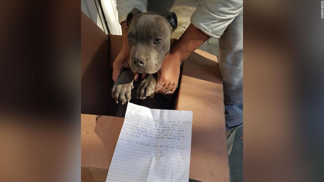 A 12-year-old boy left his dog outside a shelter. A heartbreaking note explained why