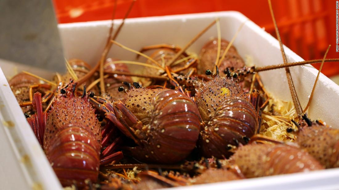 Stranded lobsters and missing wedding dresses: The coronavirus' global reach