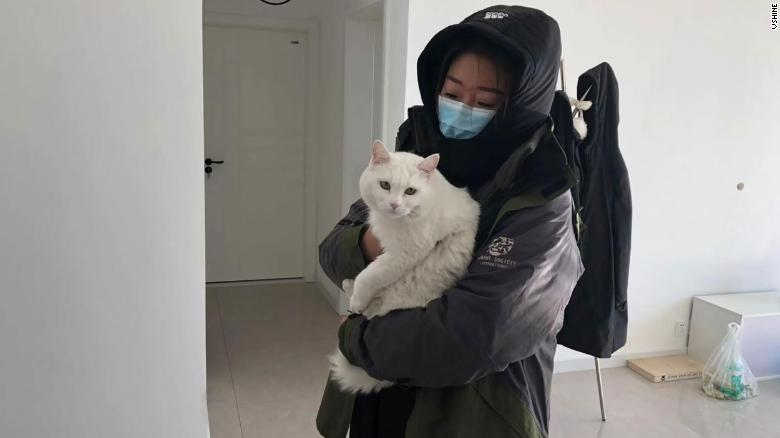 A member of Vshine, one of HSI's partner groups in China, tends to a pet cat that was left behind during the Wuhan coronavirus outbreak.