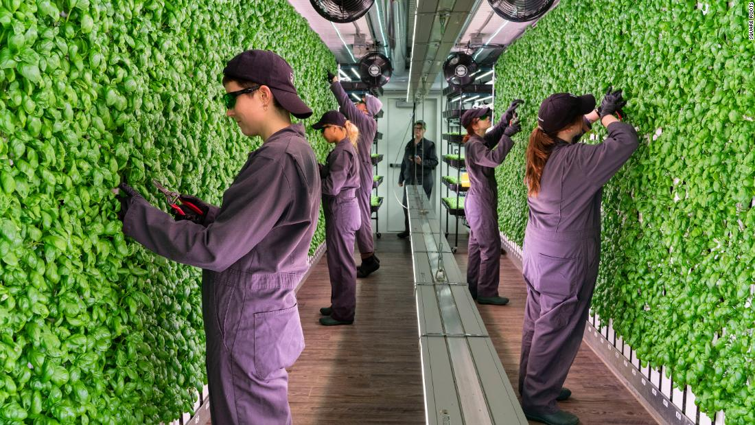 Elon Musk's brother wants to pioneer the future of farming