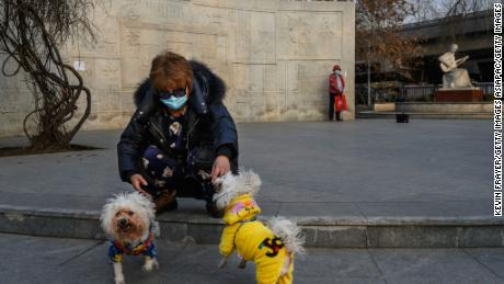 A Chinese woman wears a protective mask as she plays with her dogs at a park on February 25, 2020 in Beijing, China.