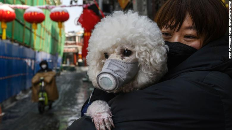 A Chinese woman holds her dog on a Beijing street on February 7, 2020.