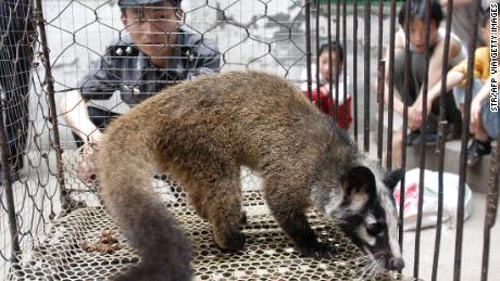 Picture taken in May 2003 shows a policeman watching over a civet cat captured in the wild by a farmer in Wuhan, central China's Hubei province.