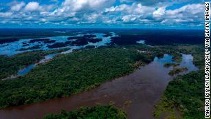 Coronavirus fears grow for Brazil's indigenous groups