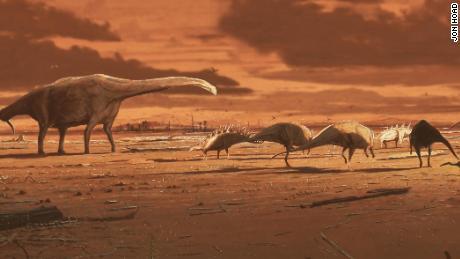 Fossilized human footprints found in Tanzania