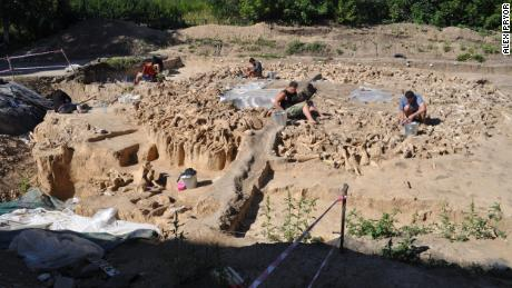 The wealth of bones used to construct the site are visible during excavation.