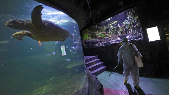 A Sea World employee sprays disinfectant in Jakarta, Indonesia, on Saturday, March 14.