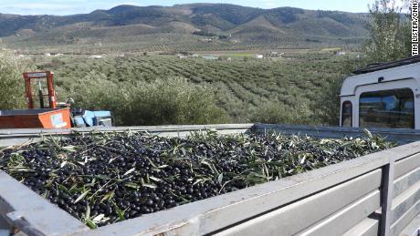 La agricultura es una parte extremadamente importante de la economía local.