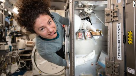 While we were stockpiling, here's what astronauts were up to in space last week