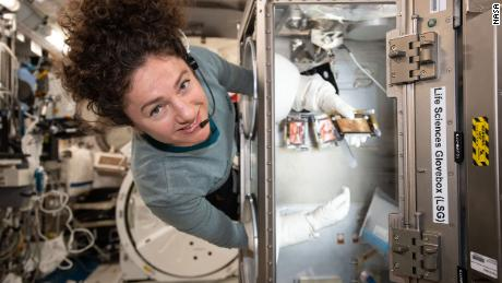 iss062e075249 (March 3, 2020) --- NASA astronaut and Expedition 62 Flight Engineer Jessica Meir swaps media that nourishes bone samples inside the Life Science Glovebox located in JAXA's (Japan Aerospace Exploration Agency) Kibo laboratory module. The experiment compares the microgravity-exposed samples to magnetically levitated samples on Earth for insights into bone ailments such as osteoporosis.