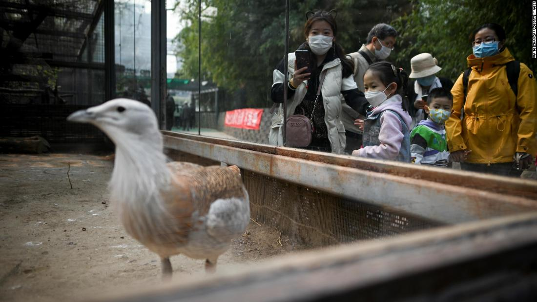 People visit the Beijing Zoo on March 25 after it reopened its outdoor exhibits to the public.