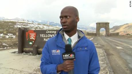 A reporter's reaction when a bison herd approaches has the internet in stitches. Yellowstone says he did the right thing