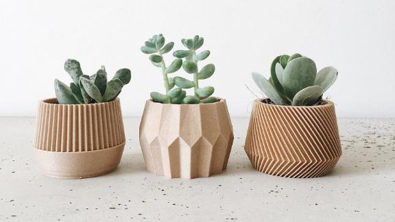 Set of 3 small succulent plant pots