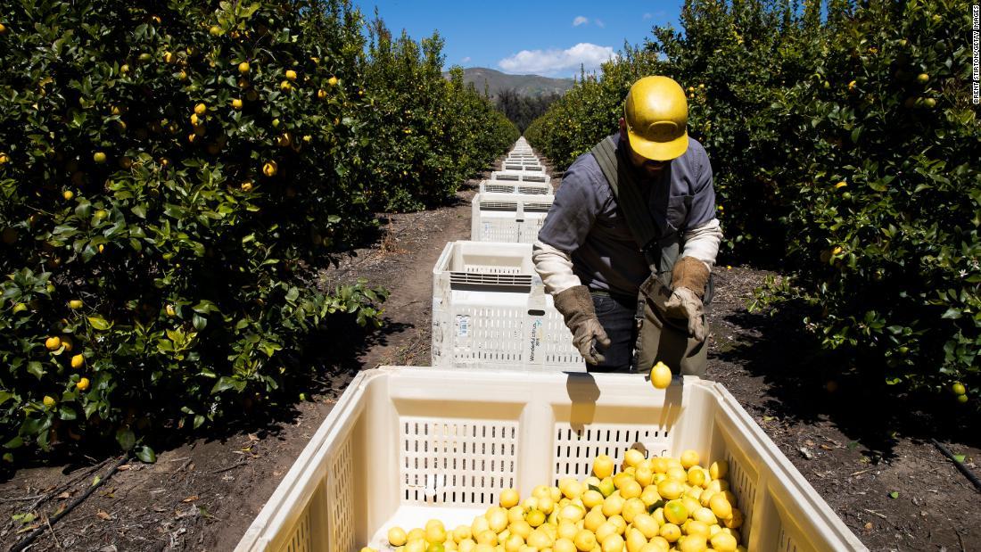 Was passiert mit unserer Nahrung, wenn die amerikanischen Landwirte nicht farm?