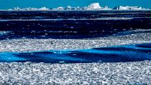Scientists recorded the first ever heat wave in this part of Antarctica