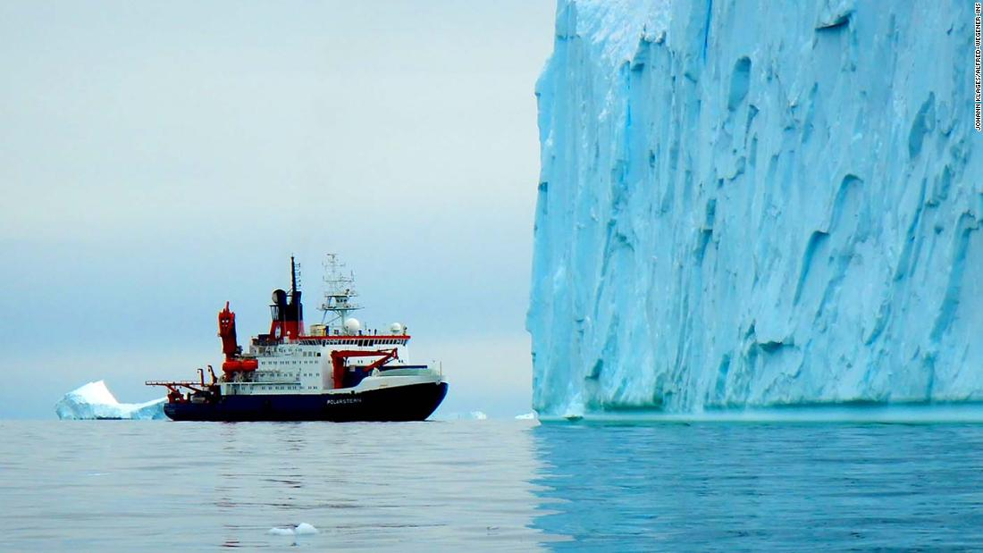 Evidence of ancient rainforests found in Antarctica