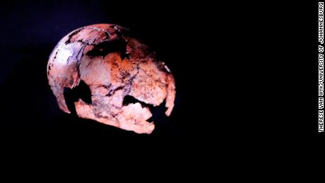 This Homo erectus skullcap is the oldest ever discovered.