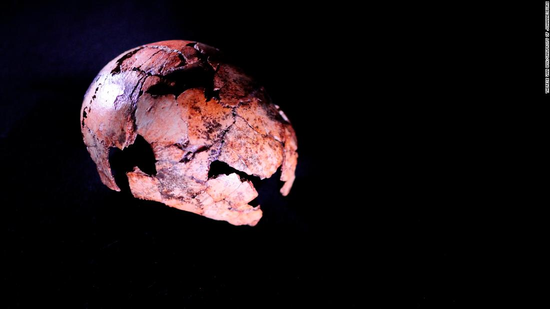 <strong>Ancient skull: </strong>A Homo erectus skullcap found northwest of Johannesburg has been identified as the oldest to date. The hominin, a direct ancestor of modern humans, moved out of Africa into other continents.