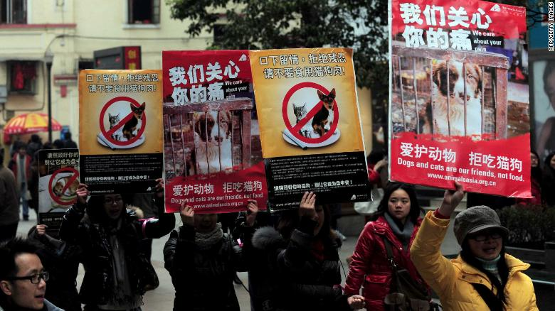 Chinese animal rights activists stage a protest calling for people to refrain from eating cats and dogs.