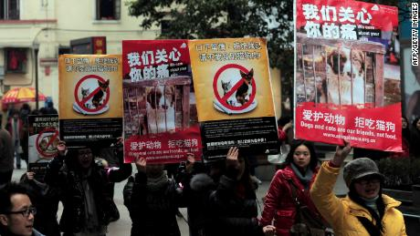 Chinese animal rights activists stage a march with posters calling for people to refrain from eating cats and dogs, in Wuhan, central China's Hubei province on January 23, 2010.   Dog and cat meat -- age-old delicacies in China -- could be off the menu in the food-loving nation under its first law against animal abuse, as people who eat either animal, both of which are viewed as promoting bodily warmth, would face fines of up to 5,000 yuan (730 USD) and up to 15 days in jail if the law is passed.      CHINA OUT       AFP PHOTO (Photo credit should read STR/AFP via Getty Images)