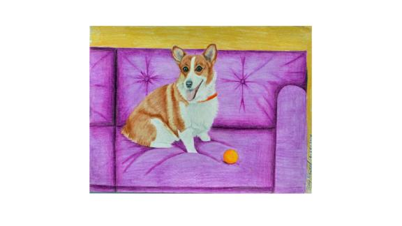 """""""Corgi on a Purple Couch"""" by Amy Husted"""